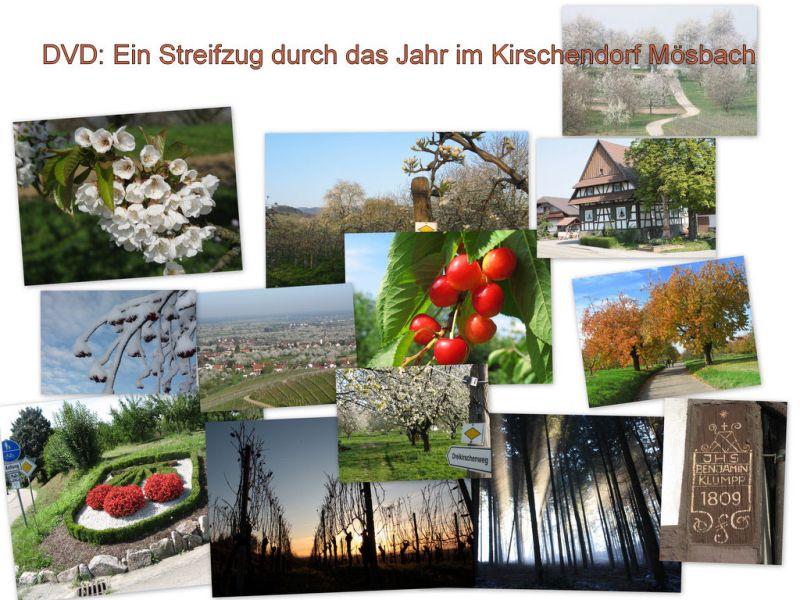 Streifzug durch Mösbach